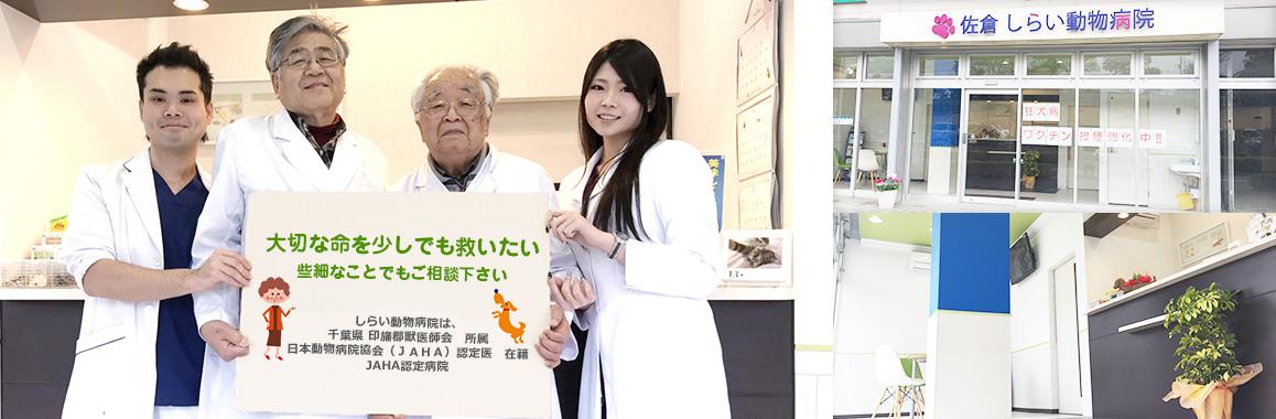大切な命を少しでも救いたい。些細なことでもご相談ください。しらい動物病院は、千葉県印旛郡獣医師会所属。日本動物病院協会(JAHA)認定医在籍。JAHA認定病院
