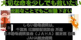 大切な命を少しでも救いたい。些細なことでもご相談下さい。しらい動物病院は、千葉県 印旛郡獣医師会 所属日本動物病院協会(JAHA)認定医 在籍JAHA認定病院